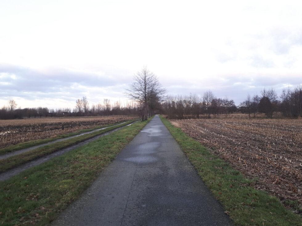 De oude spoorwegbedding